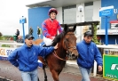 Topadee Limerick win 21.6.2013